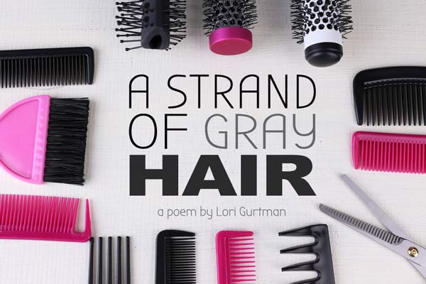 a strand of gray hair